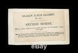 CDV Photo Civil War Union Soldier Captured Confederate Horse Brady 1860s