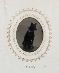 Gem tintype family photo album, Civil War soldier, dog, doll, Massachusetts
